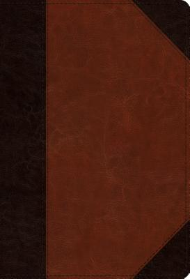 Image for ESV Student Study Bible (TruTone, Brown/Cordovan, Portfolio Design)