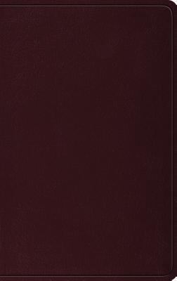 Image for ESV Thinline Bible (Burgundy)