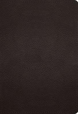 Image for ESV Large Print Compact Bible (Buffalo Leather, Deep Brown)