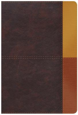 Image for NIV Rainbow Study Bible, Cocoa/Terra Cotta/Ochre LeatherTouch