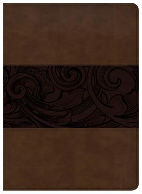 "Image for ""''CSB Study Bible, Mahogany Leathertouch''"""