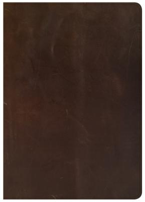 """Image for """"''CSB She Reads Truth Bible, Brown Genuine Leather''"""""""