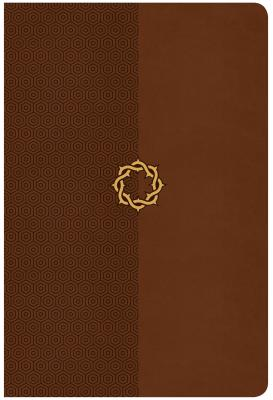 Image for CSB Essential Teen Study Bible, Walnut LeatherTouch