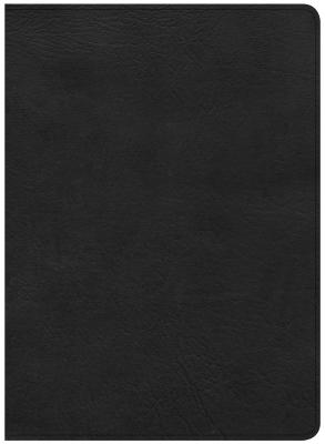 Image for CSB Study Bible, Black Deluxe LeatherTouch, Indexed