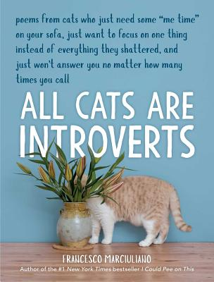 Image for All Cats Are Introverts