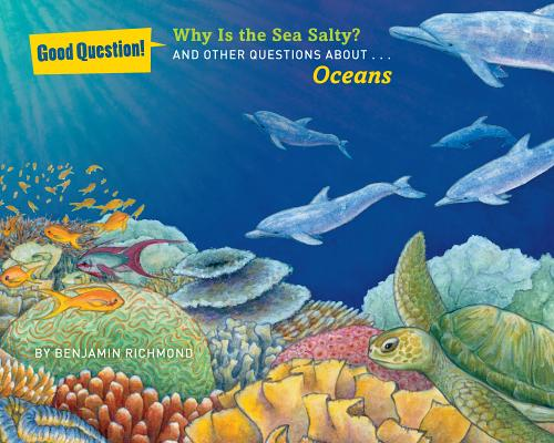 Image for Why Is the Sea Salty?: And Other Questions About Oceans (Good Question!)