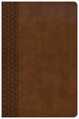 """Image for """"CSB Everyday Study Bible--soft leather-look, British tan"""""""