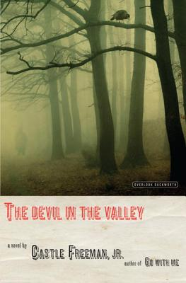 Image for The Devil in the Valley: A Novel