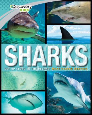 Image for Sharks (Discovery Kids) (Family Reference Guide)