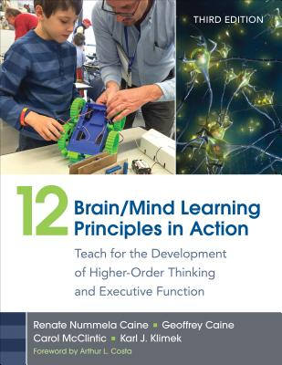 Image for 12 Brain/Mind Learning Principles in Action: Teach for the Development of Higher-Order Thinking and Executive Function