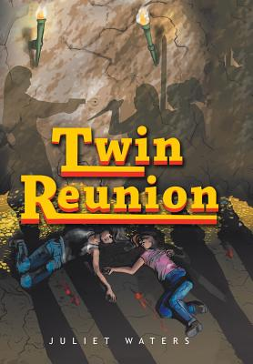 Image for Twin Reunion