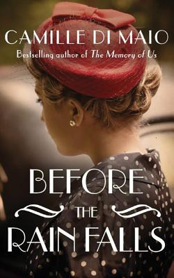 Image for Before the Rain Falls: A Novel