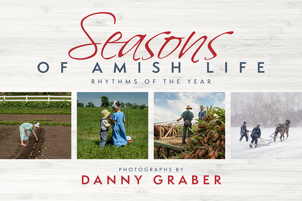 Image for Seasons of Amish Life: Rhythms of the Year