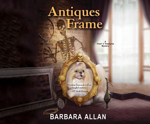 Image for Antiques Frame (Trash 'N' Treasure Mysteries)