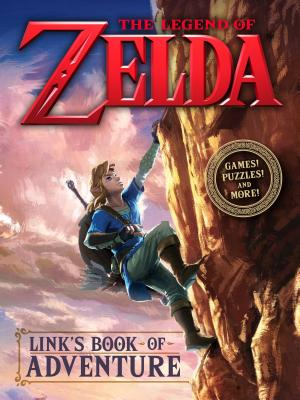Image for Link's Book of Adventure (Nintendo)