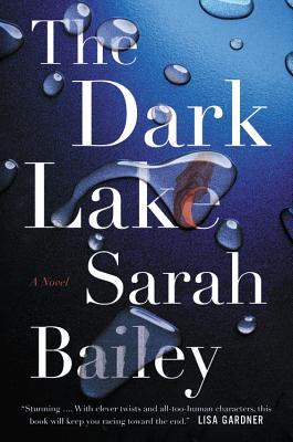 Image for DARK LAKE, THE A NOVEL