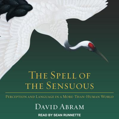 Image for The Spell of the Sensuous: Perception and Language in a More-Than-Human World