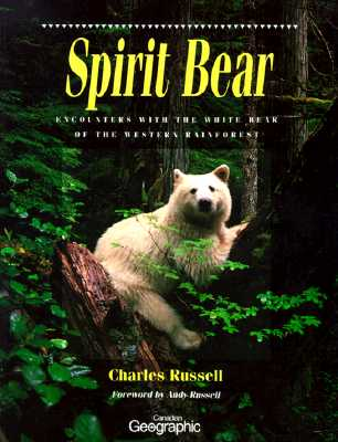 Image for Spirit Bear: Encounters With the White Bear of the Western Rainforest