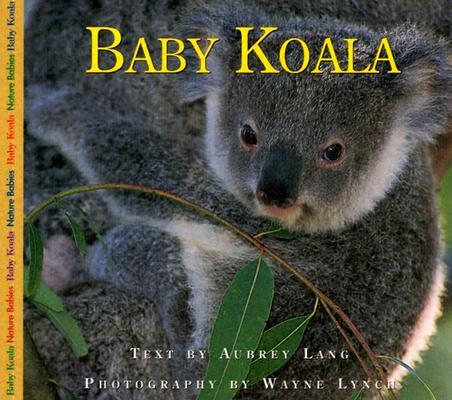 Image for Baby Koala (Nature Babies)