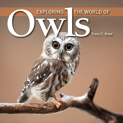 Image for Exploring the World of Owls