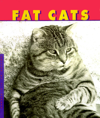 Image for Fat Cats