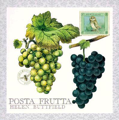 Posta Frutta - Postcard Book, Buttfield, Helen