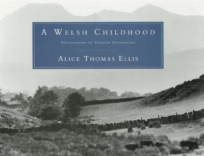Image for WELSH CHILDHOOD