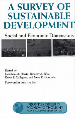 Image for A Survey of Sustainable Development: Social And Economic Dimensions (Frontier Issues in Economic Thought)