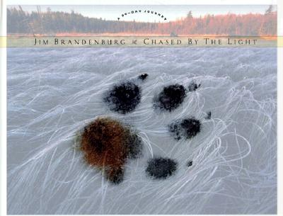 Image for Chased by the Light: A 90-Day Journey