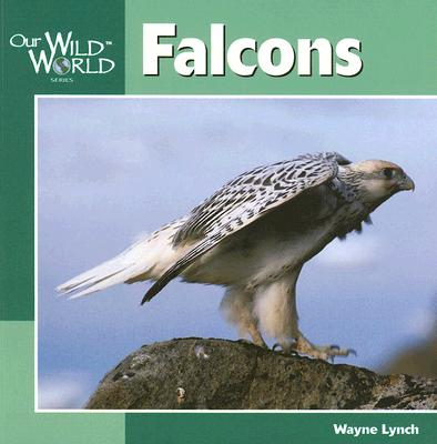 Image for Falcons (Our Wild World)
