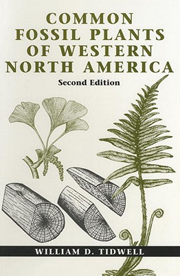 Image for Common Fossil Plants of Western North America
