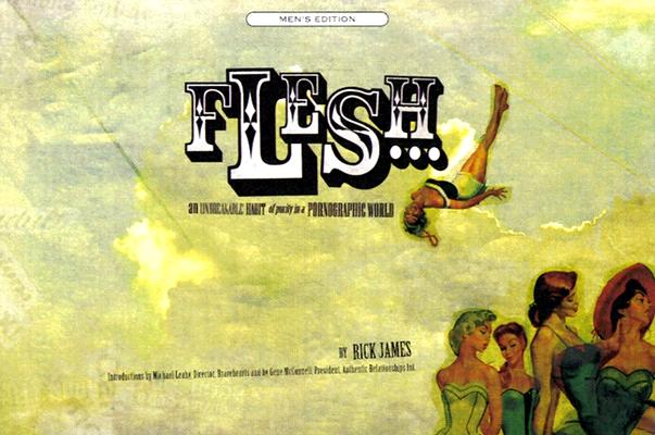 Image for Flesh: An Unbreakable Habit of Purity in a Pornographic World