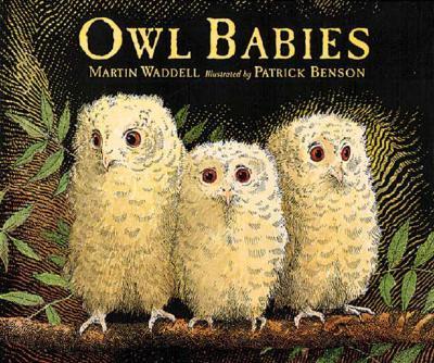 "Owl Babies, ""Waddell, Martin"""