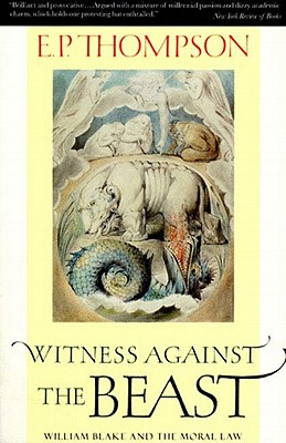 Image for Witness Against the Beast: William Blake and the Moral Law