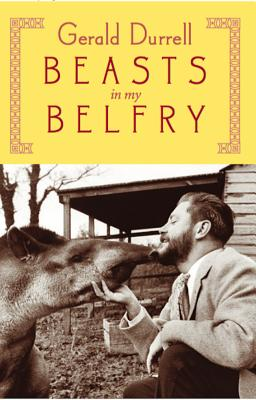 Image for BEASTS IN MY BELLY