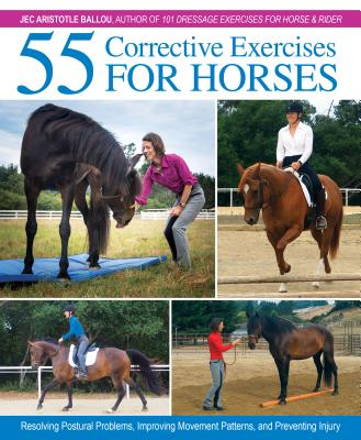 Image for 55 Corrective Exercises for Horses: Resolving Postural Problems, Improving Movement Patterns, and Preventing Injury