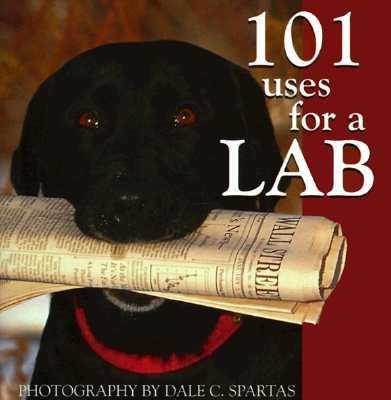 Image for 101 Uses for a Lab