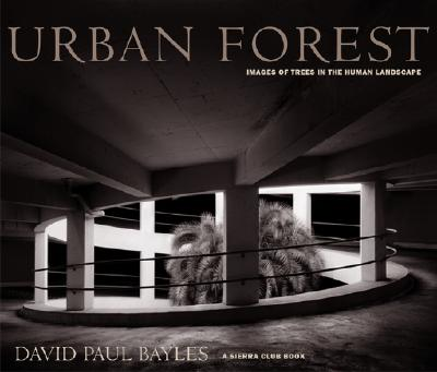 Image for Urban Forest: Images of Trees in the Human Landscape (Sierra Club Books Publication)