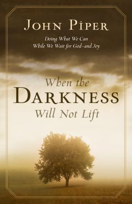 Image for When the Darkness Will Not Lift: Doing What We Can While We Wait for God--and Joy