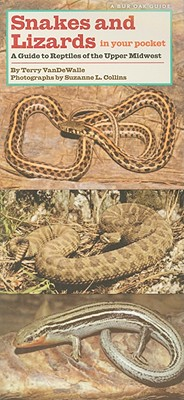 Snakes and Lizards in Your Pocket: A guide to Reptiles in the Upper Midwest, VanDeWalle, T. and S. L. Collins