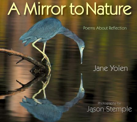Image for Mirror to Nature Poems About Reflection