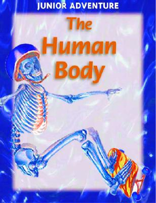 Image for The Human Body (Junior Adventure)