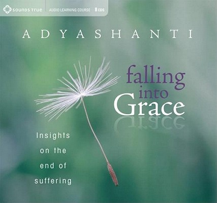 Image for Falling into Grace: Insights on the End of Suffering