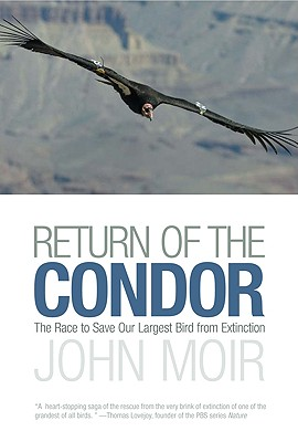 Image for Return of the Condor: The Race to Save Our Larges