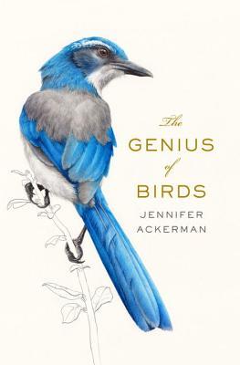 Image for Genius of Birds