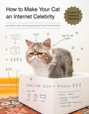 Image for How To Make Your Cat An Internet Celebrity