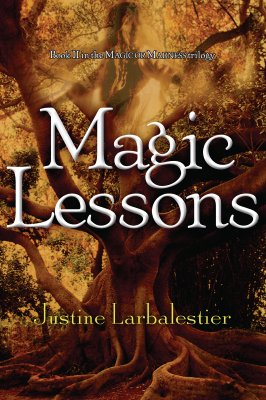 Image for Magic Lessons (Book 2 in the Magic or Madness Trilogy)