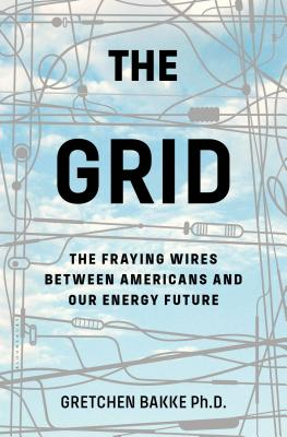 Image for The Grid: The Fraying Wires Between Americans and Our Energy Future