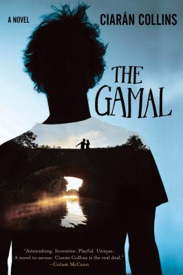 The Gamal: A Novel, Collins, Ciarán