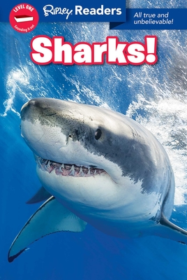 Image for RIPLEY READERS: SHARKS! (LEVEL 1)